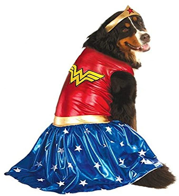 dog Wonder Woman costume