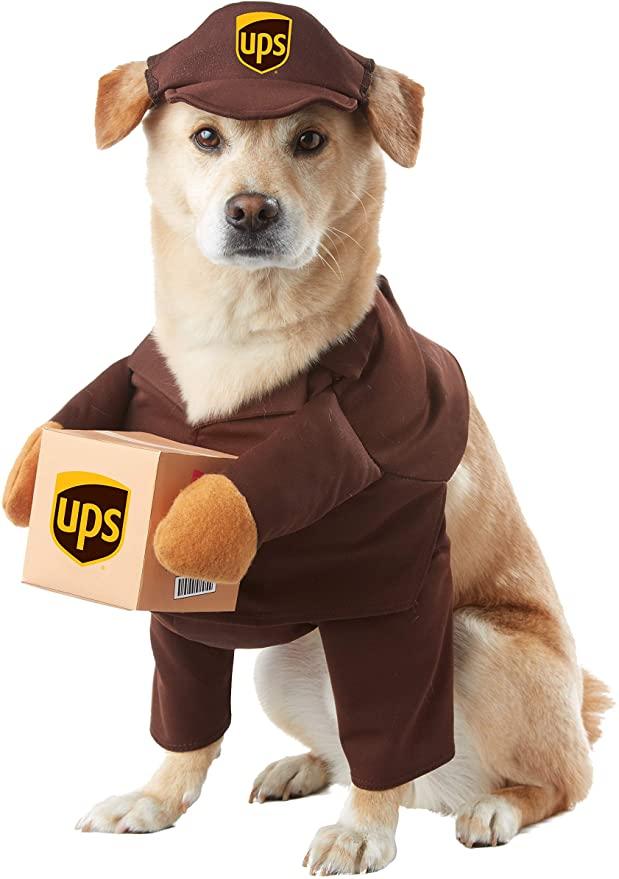 Dog UPS Halloween Costume