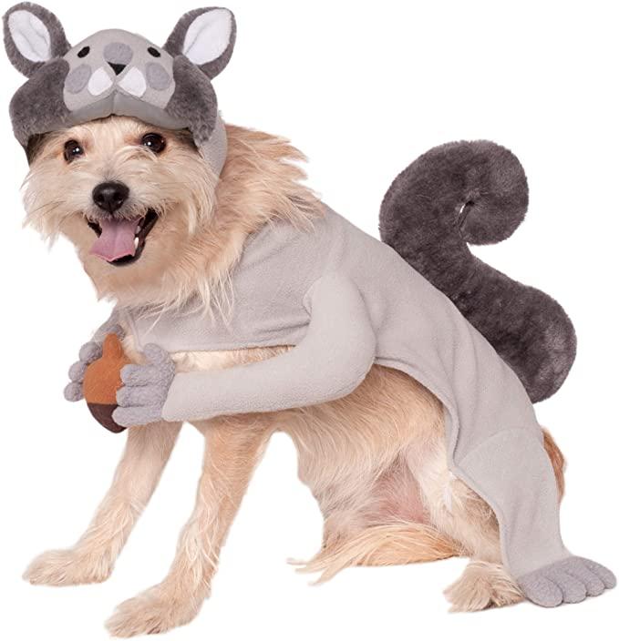 squirrel dog costume
