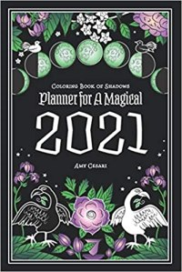 adult coloring books book of shadows planner