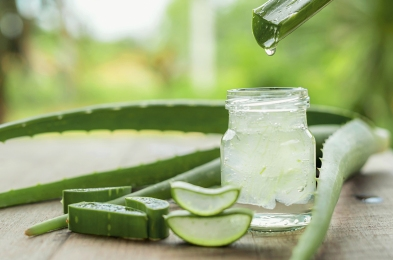 aloe-vera-featured-image