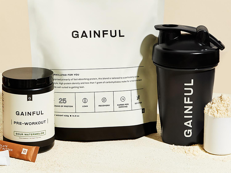 gainful protein powder