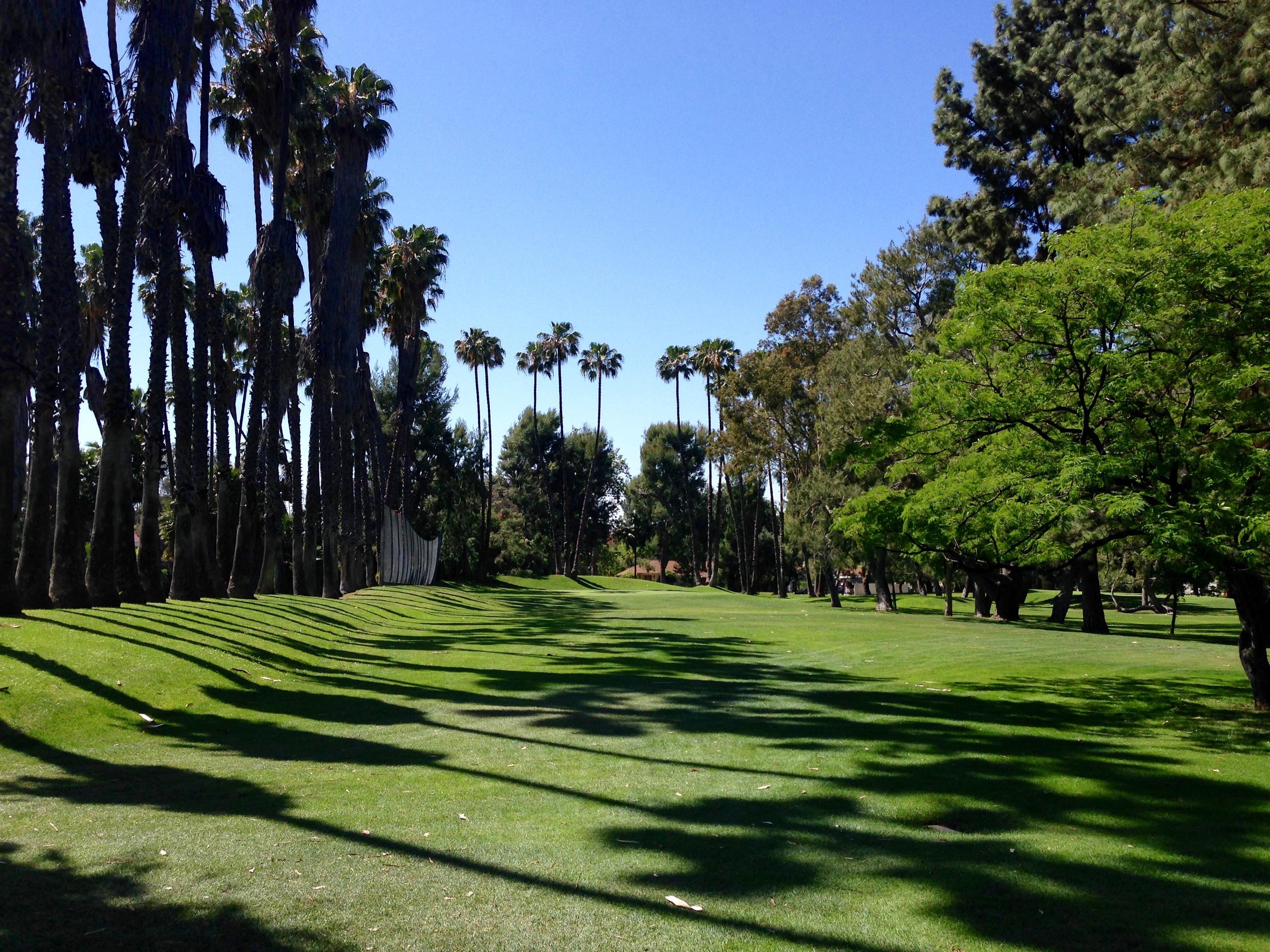 Weddington Golf and Tennis