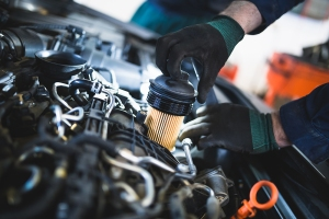 oil filter, how to change your oil