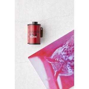 Revolog 35mm Film