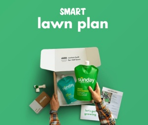 Sunday smart lawn care