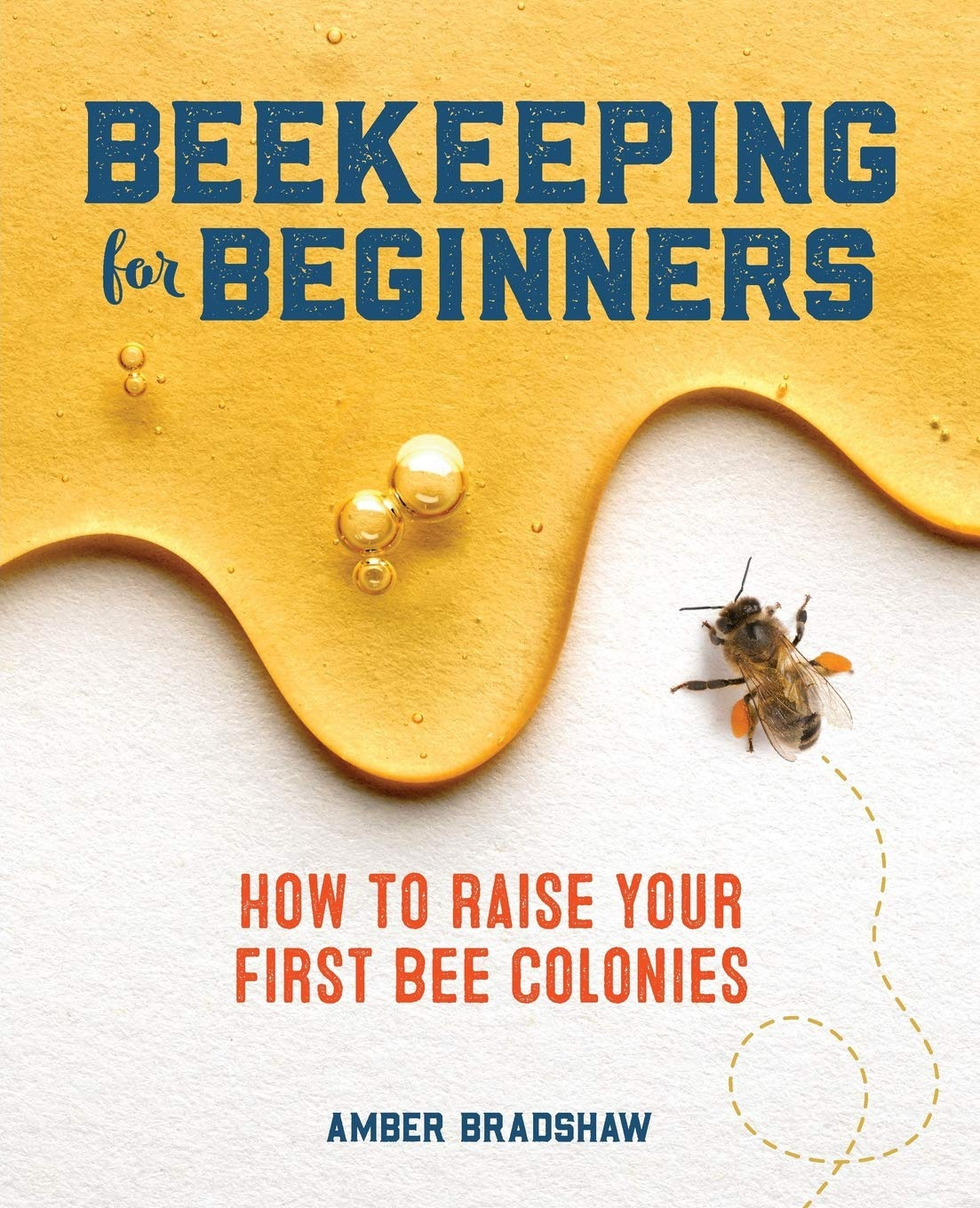 Beekeeping for Beginners: How To Raise Your First Bee Colonies