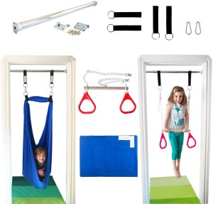 DreamGYM Indoor Swing