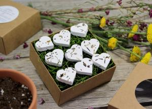 eco friendly gifts freemountaindesigns seed bomb
