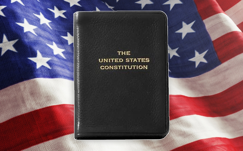 mini constitution