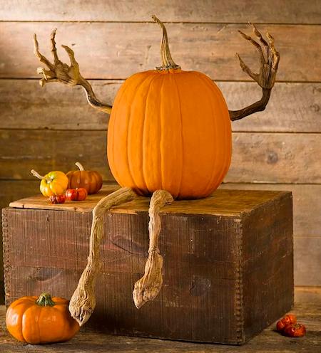Pumpkin Vine Arms and Legs