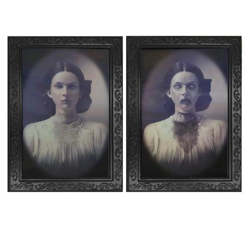 Suoke Lenticular 3D Changing Face Portrait