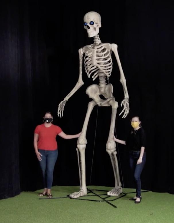 giant 12-foot skeleton home depot