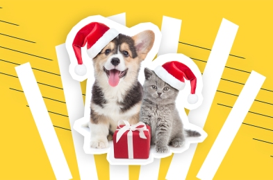 gifts-for-animal-lovers