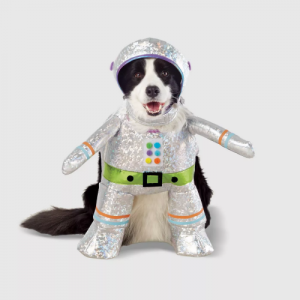 robot dog costume