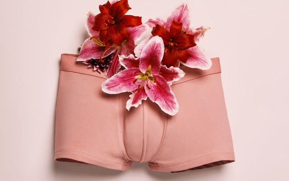 Boy Smells Underwear