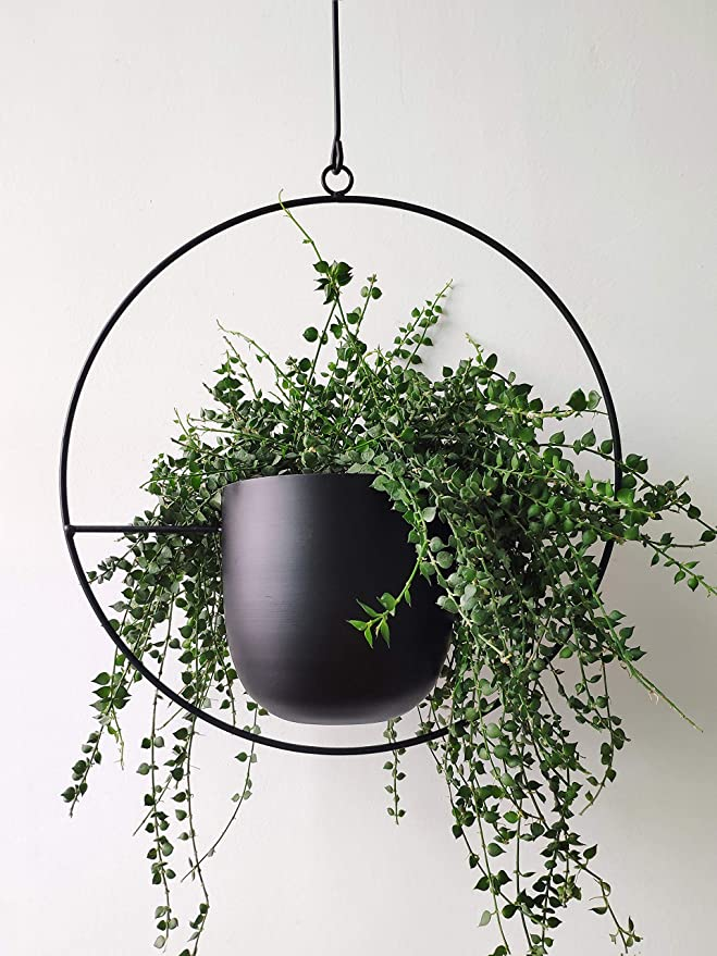 Best home office decor hanging planter