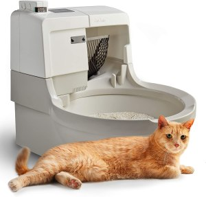 CatGenie self-cleaning litter box, best self-cleaning litter box