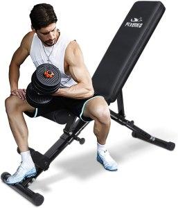 flybird adjustable workout bench, home gym essentials