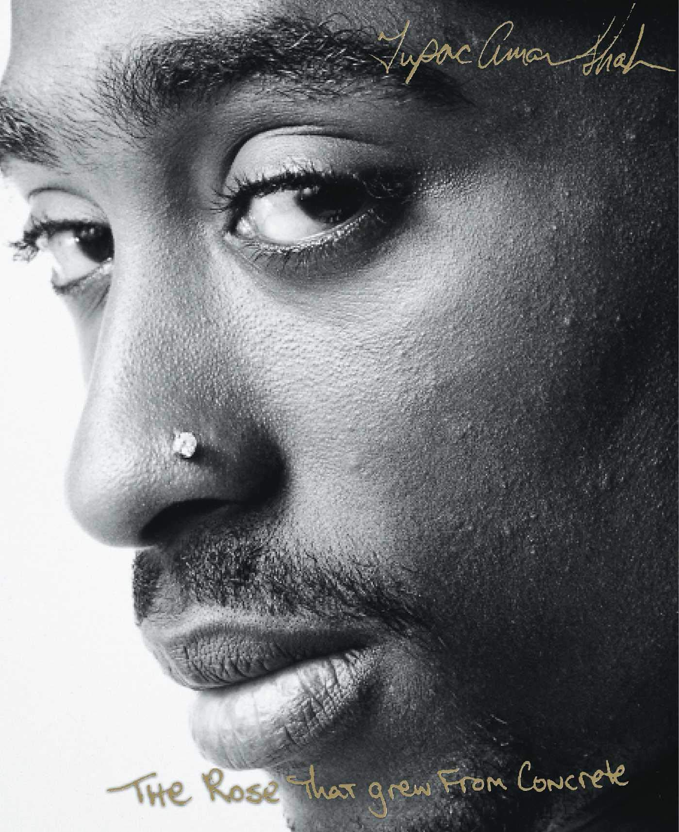 Tupac Shakur's The Rose That Grew From Concrete
