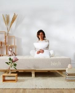 birch mattress, best mattresses for back pain