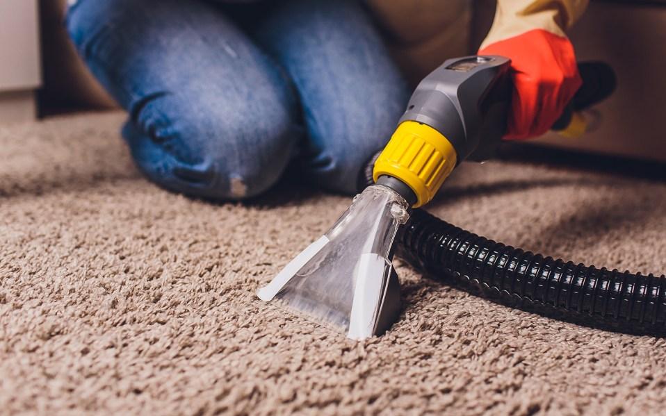 carpet spot cleaner, best carpet spot