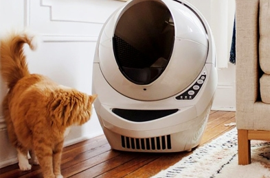 self-cleaning-litter-boxes