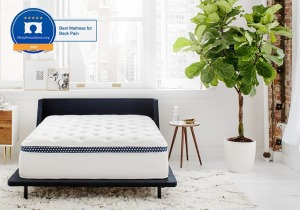 The WinkBed, mattresses for back pain
