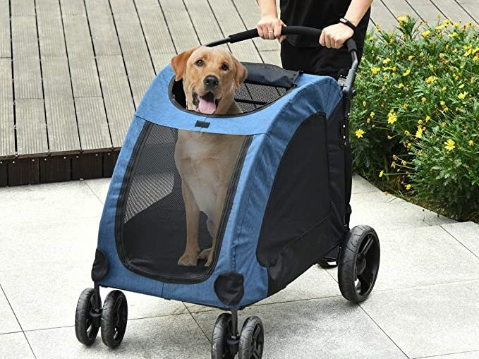 Pet stroller with dog