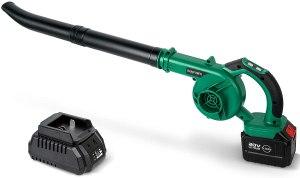 bqypower leaf vacuum
