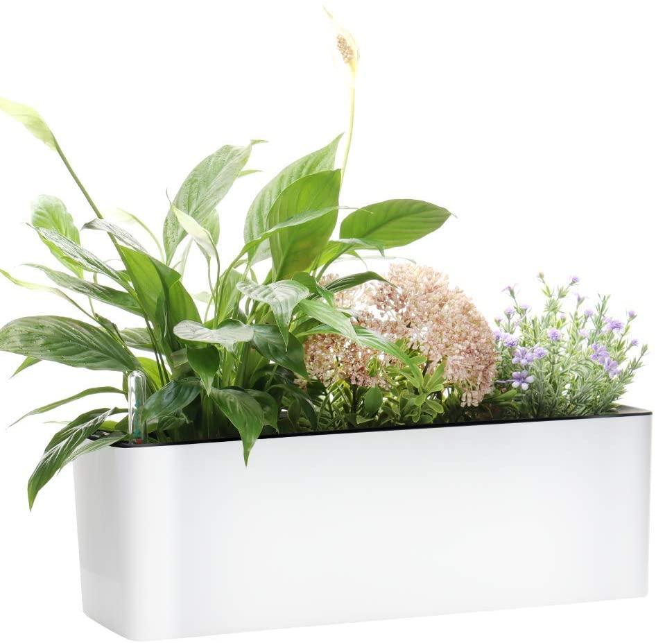 Elongated Self Watering Planter Pots Window Box by Garden Basix