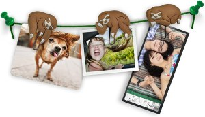 Fred Sloths on a Vine Picture Hangers, best gifts for mom