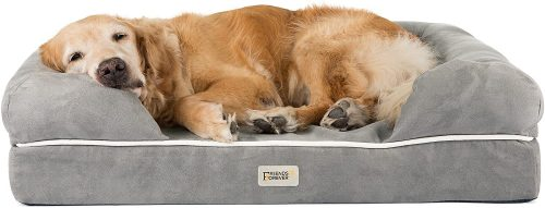 Friends Forever Lounge Dog Bed