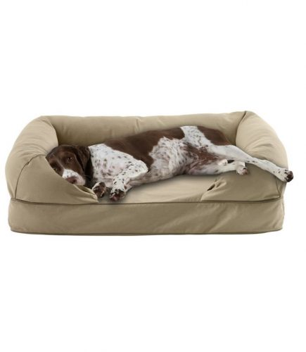 LL Bean Therapeutic Dog Bed