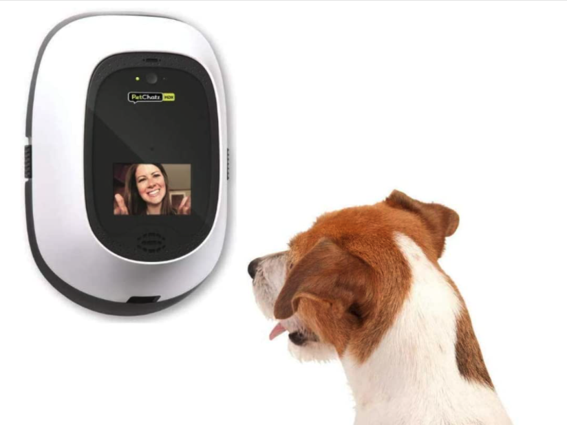 petchatz pet camera