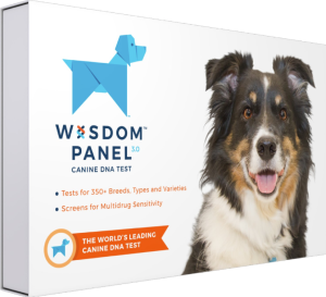 wisdom panel 3.0 dog DNA kit, gifts for dog lovers