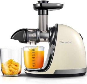 AMZCHEF juicer, cold press juicer