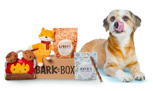 bark box, gifts for dog lovers