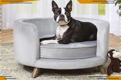 best-dog-beds
