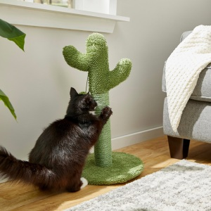 Frisco Cactus Cat Scratching Post