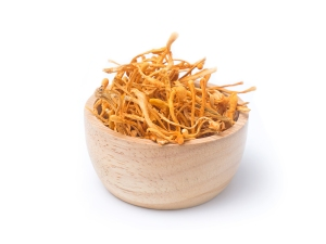 cordyceps mushrooms, what are adaptogens