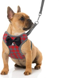 dapper dog harness, gifts for dog lovers