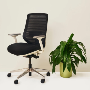 Branch ergonomic office chair, best office chair