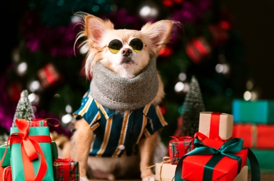gifts-for-dog-lovers-featured-image