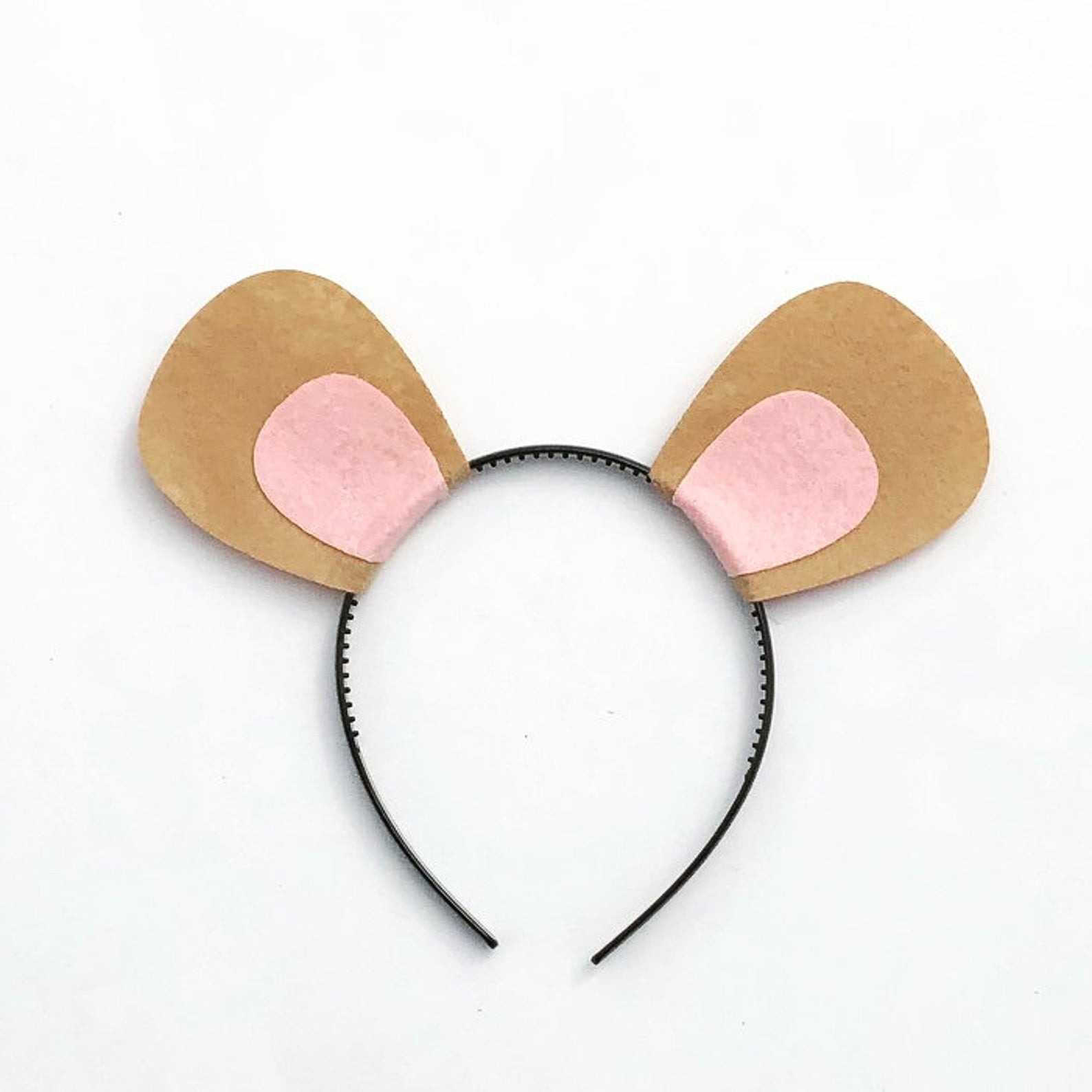 Aardvark Ears