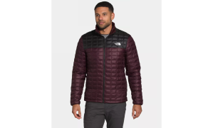 the north face men's thermoball eco jacket, best puffer jackets