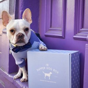 the dapper dog subscription box, gifts for dog lovers