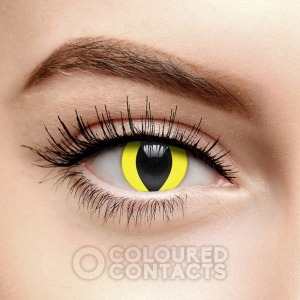 Coloured Contacts Cat Eye Contact Lenses