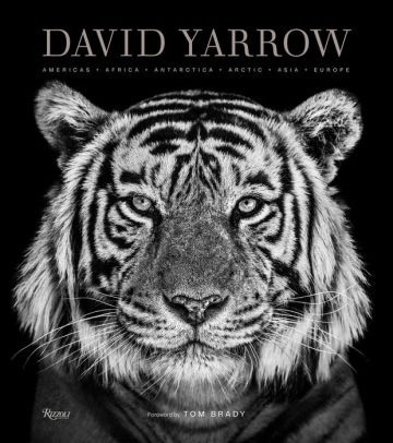 david yarrow photography book, best books to give as gifts