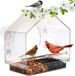 best bird feeders nature anywhere